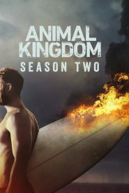 Animal Kingdom: Temporada 2