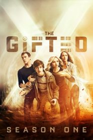 The Gifted: Temporada 1