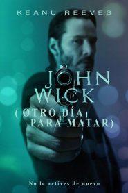John Wick (Otro día para matar)