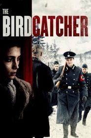 The Birdcatcher (El Cazador de Pájaros)